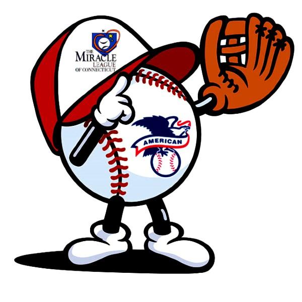 American League Accessible Baseball